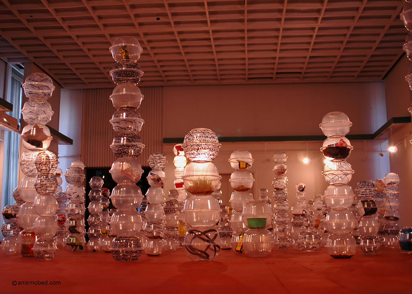 Roots of soil, 2006, Installation, Consumables from a month of artist life, Disposable bowl