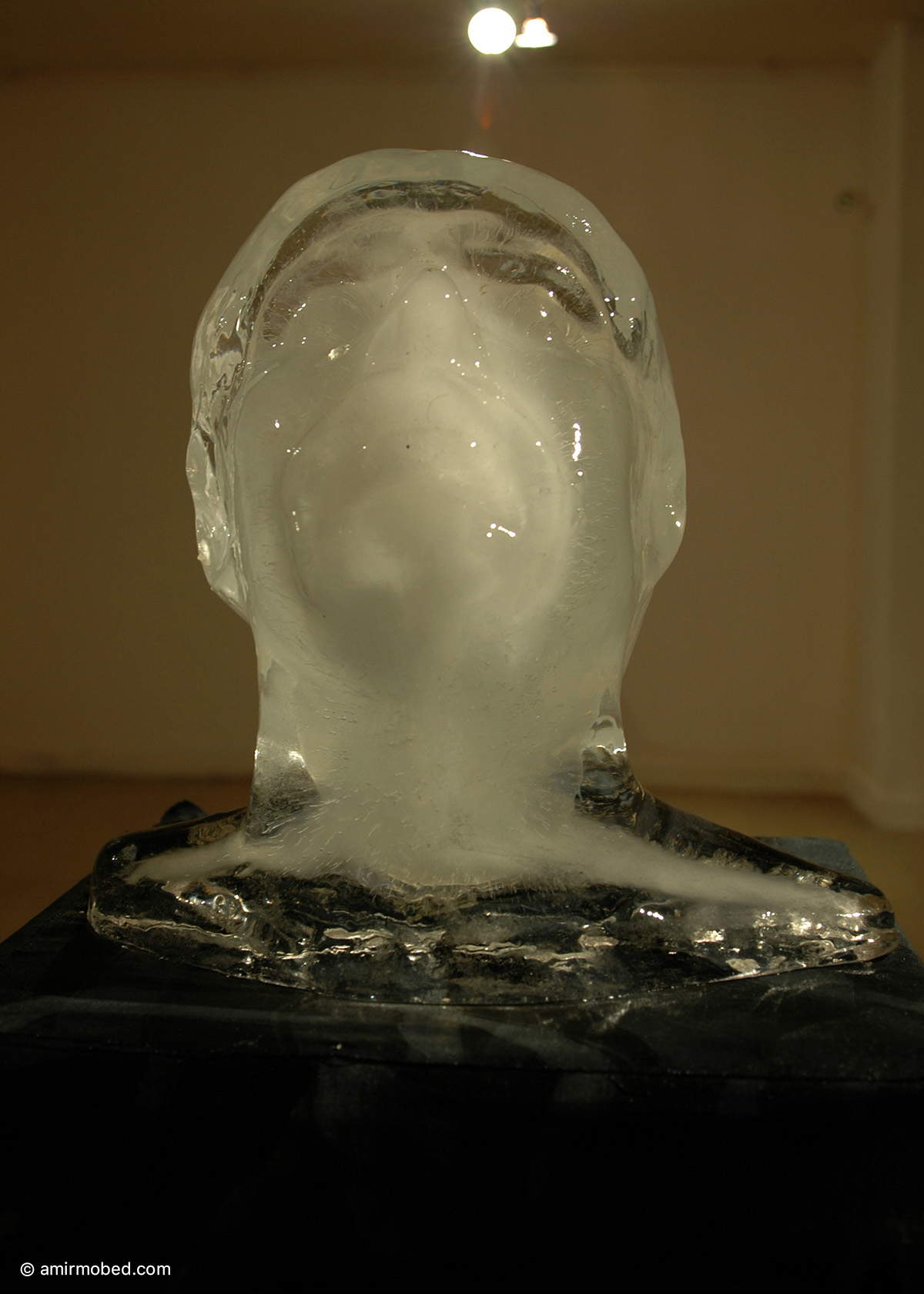 Self Portrait, 2006, Installation, ice