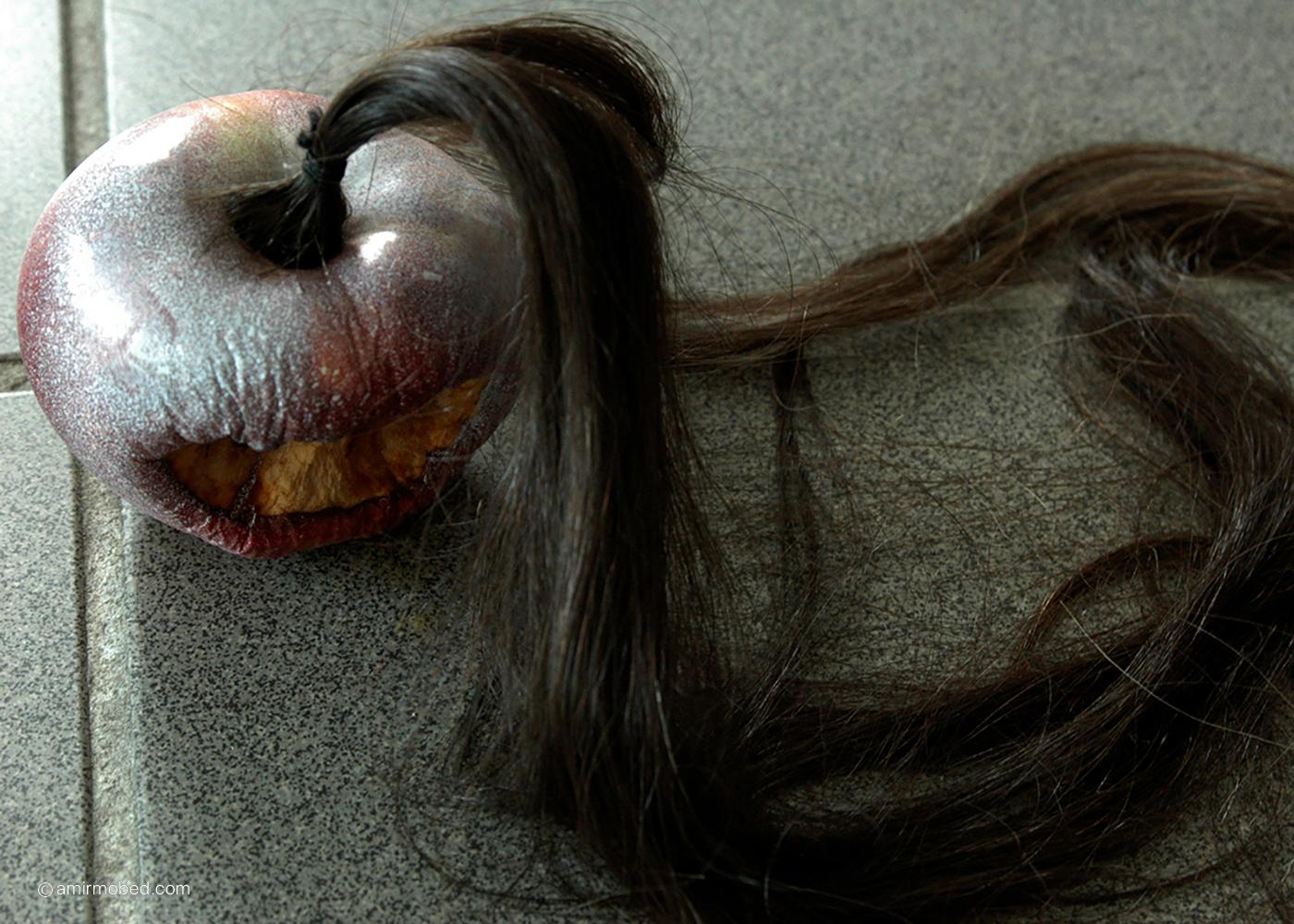 باکرگی، چیدمان، ۱۳۸۴، سیب، اسپری سفید، مو، دستمال کاغذی