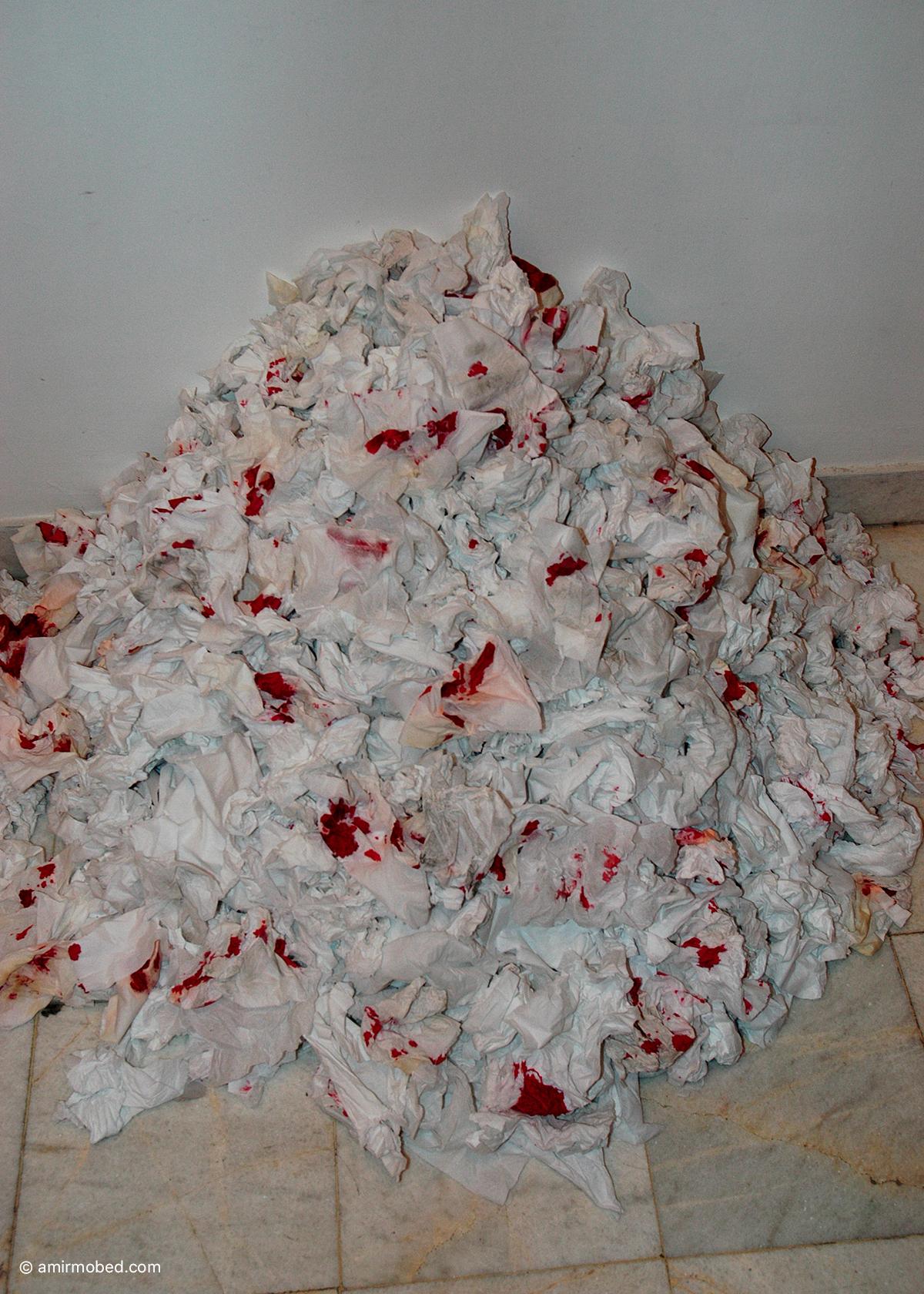 باکرگی ، ۱۳۸۳، چیدمان، سیب، رنگ سفید، مو، دستمال کاغذی